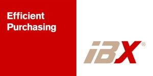 ibx_logotyp_cmyk_lg
